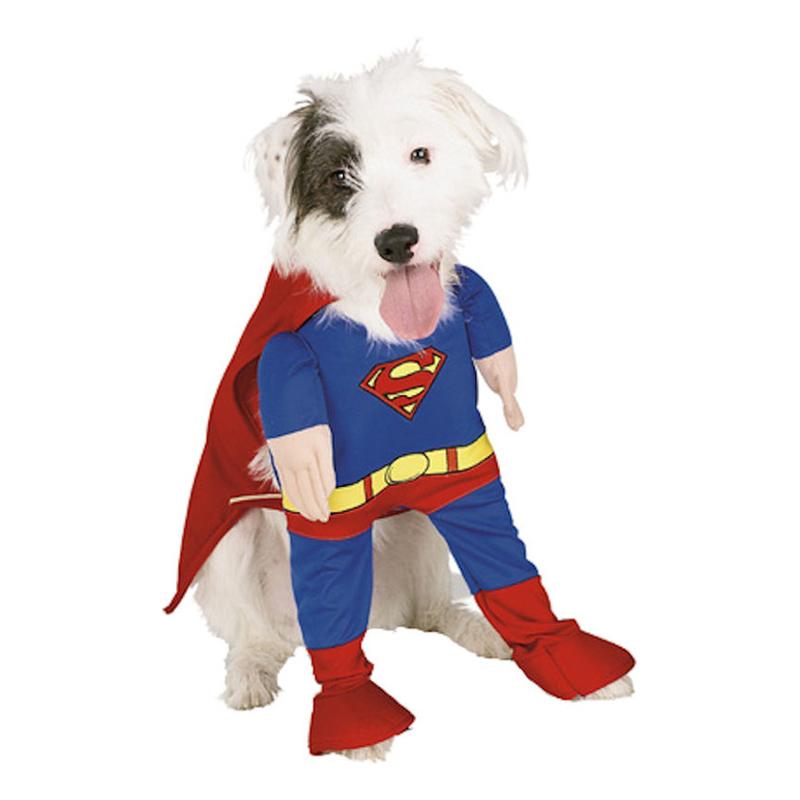 Superman Hund Maskeraddräkt - Partykungen.se 6b40c74616706