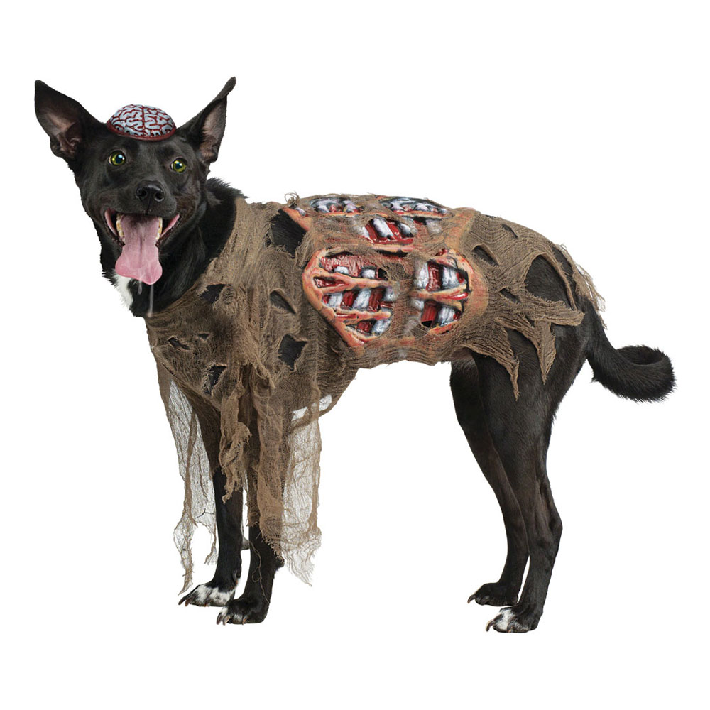 Zombie Hund Maskeraddräkt - Partykungen.se 83b997c8bdfaa