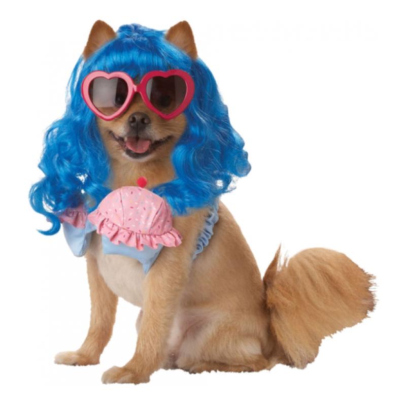 Katy Perry Hund Maskeraddräkt - Small