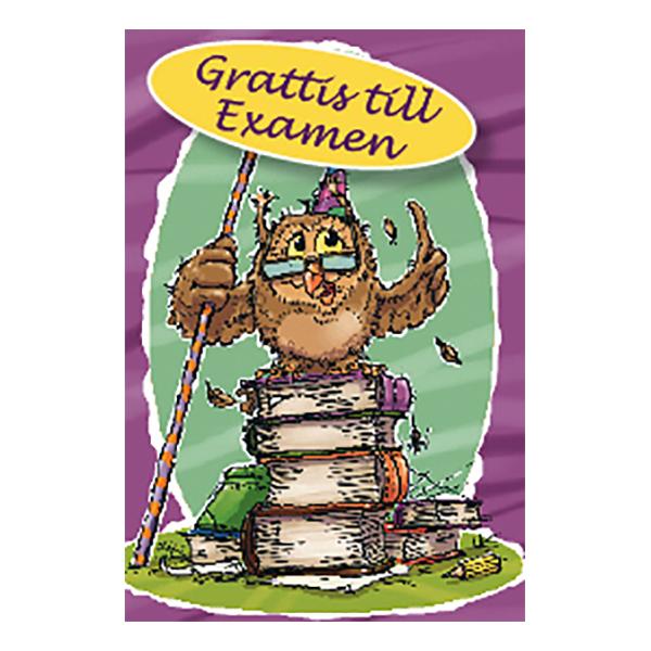 Dubbelkort Mini Grattis till Examen Uggla
