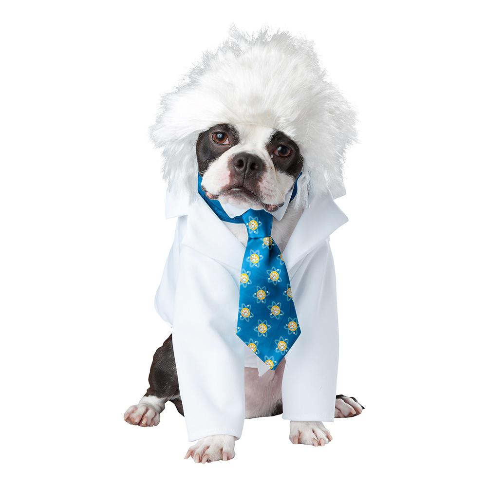 Einstein Hund Maskeraddräkt - X-Small