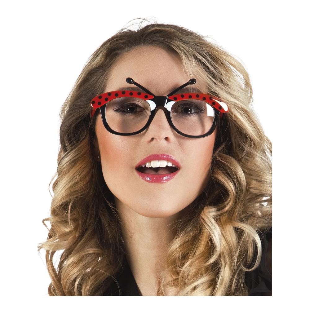 Glasögon Nyckelpiga