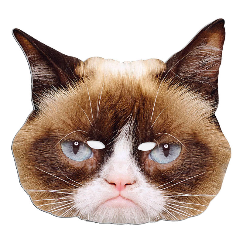 Grumpy Cat Pappmask - One size