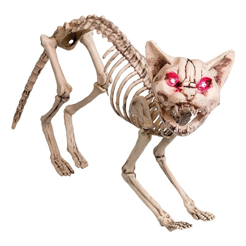 Kattskelett med Ljud & Ljus Prop