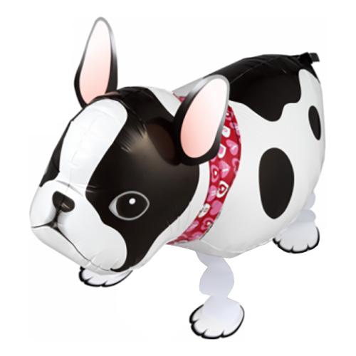 Petwalker Fransk Bulldog