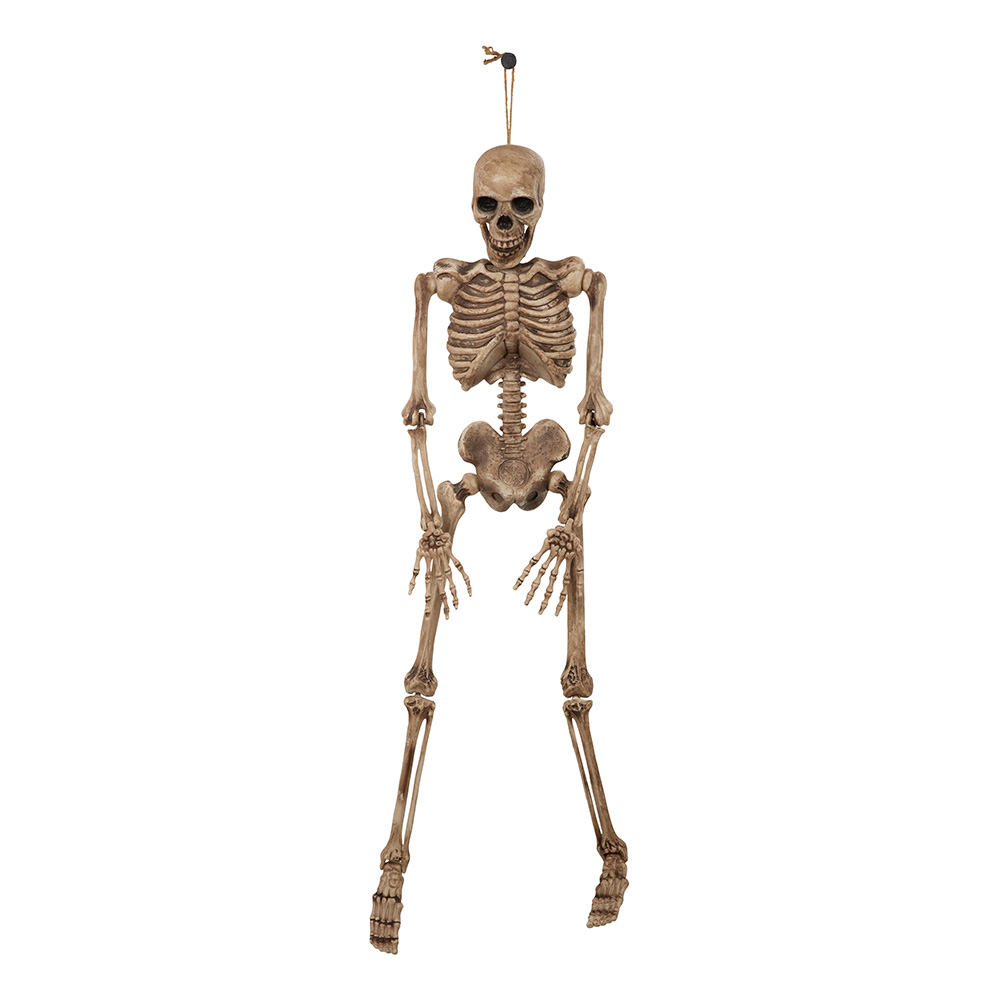 Hängande Skelett Halloween Prop