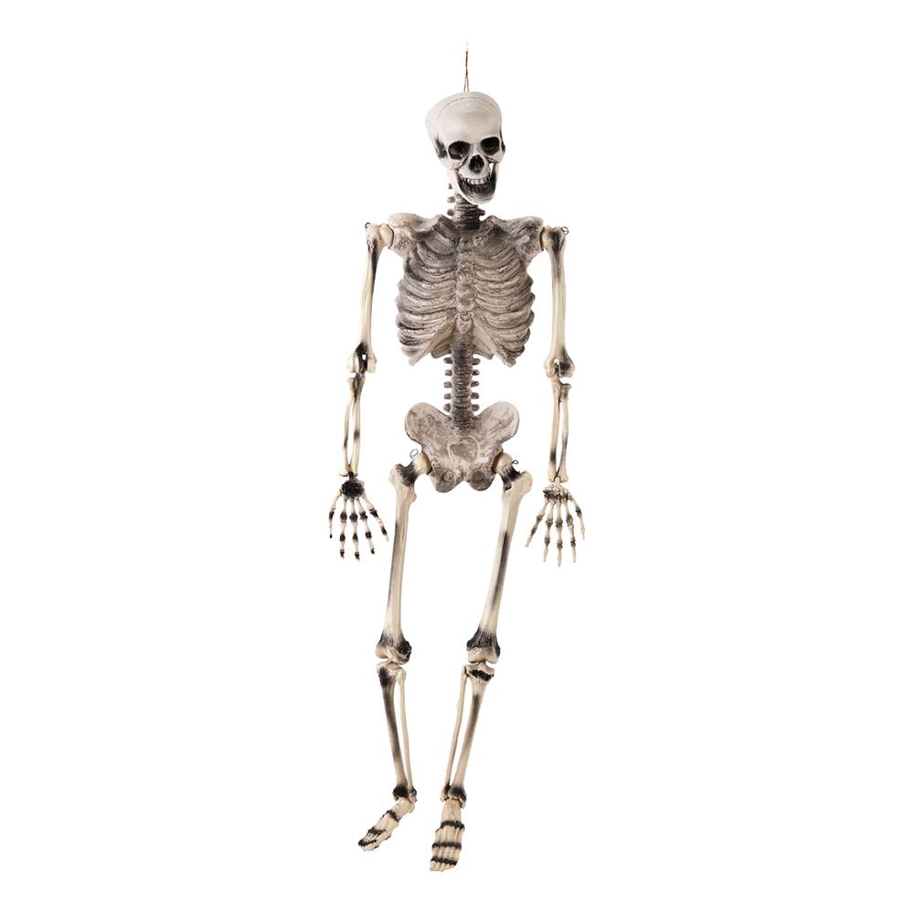 Skelett Hängande Prop