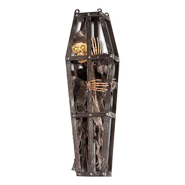 Skelett i Kista Prop