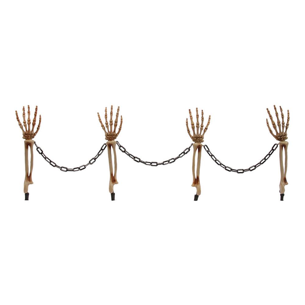 Skelettarmar med Kedja