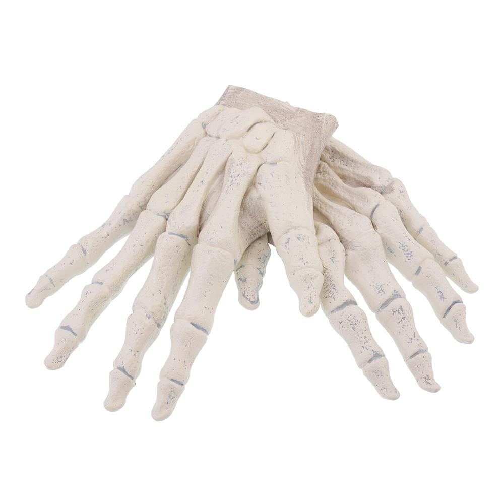 Skeletthänder Handskar - One size