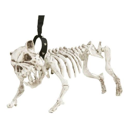 Skeletthund med Koppel