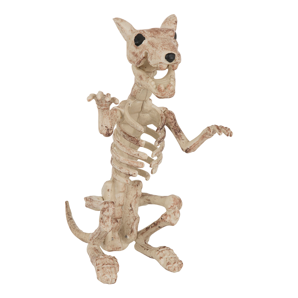 Skelettråtta Prop