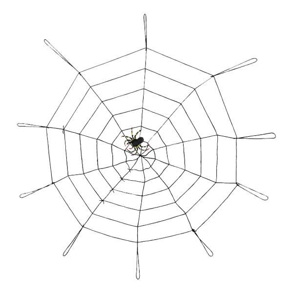 Stort Spindelnät med Spindel