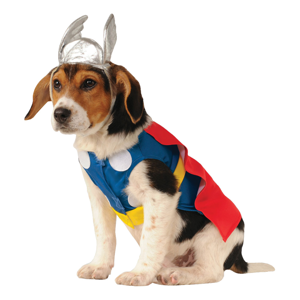 Thor Hund Maskeraddräkt - Small billigt online ... c963c7dea4977